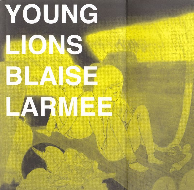 Cover and front flap from Young Lions